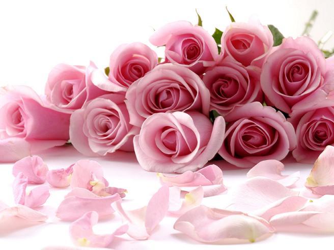 1398454595_flowers_01.jpg
